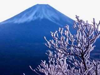 富士山と霧氷