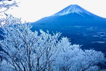 富士山と樹氷