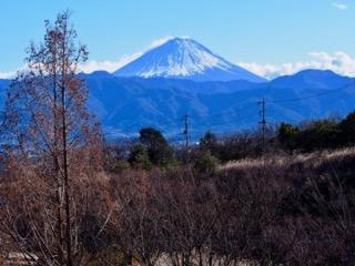 双葉SAからみた富士山