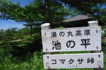 コマクサ峠