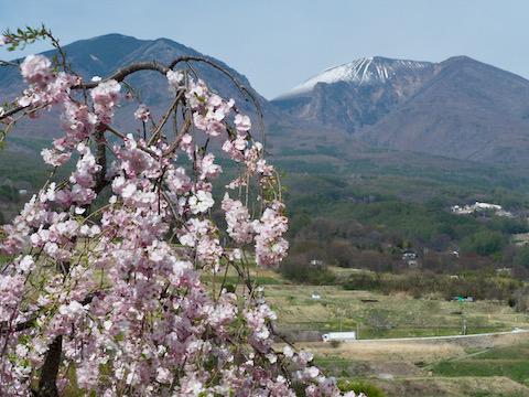 飯縄山公園