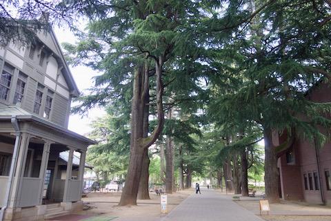 あがたの森公園